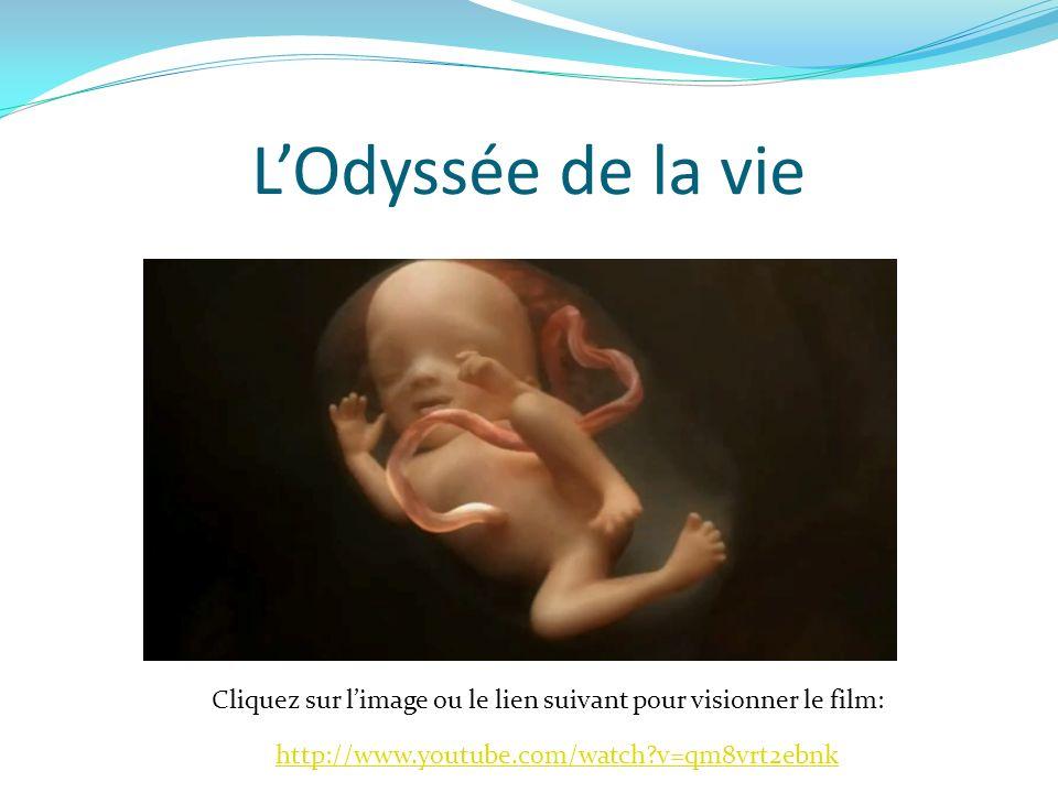 LOdyssée de la vie Cliquez sur limage ou le lien suivant pour visionner le film: http://www.youtube.com/watch?v=qm8vrt2ebnk