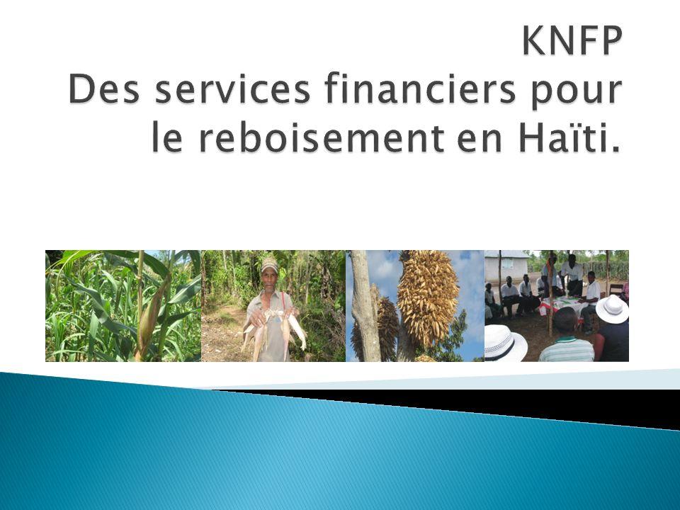 Une brève présentation du KNFP Le Makòn, cest quoi? Le Crédit mango
