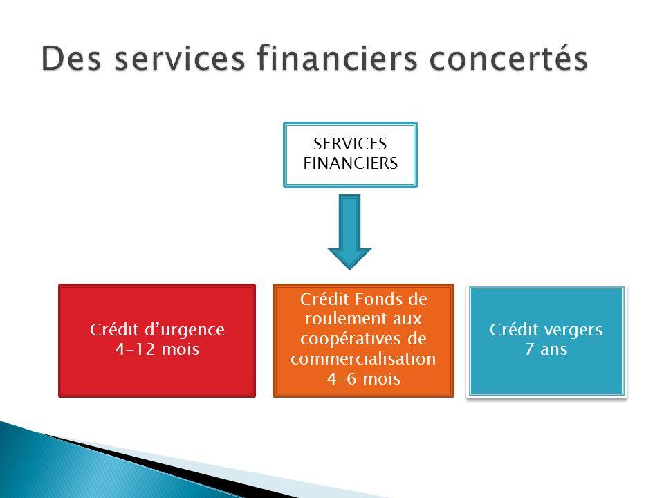SERVICES FINANCIERS Crédit durgence 4-12 mois Crédit Fonds de roulement aux coopératives de commercialisation 4-6 mois Crédit vergers 7 ans Crédit ver