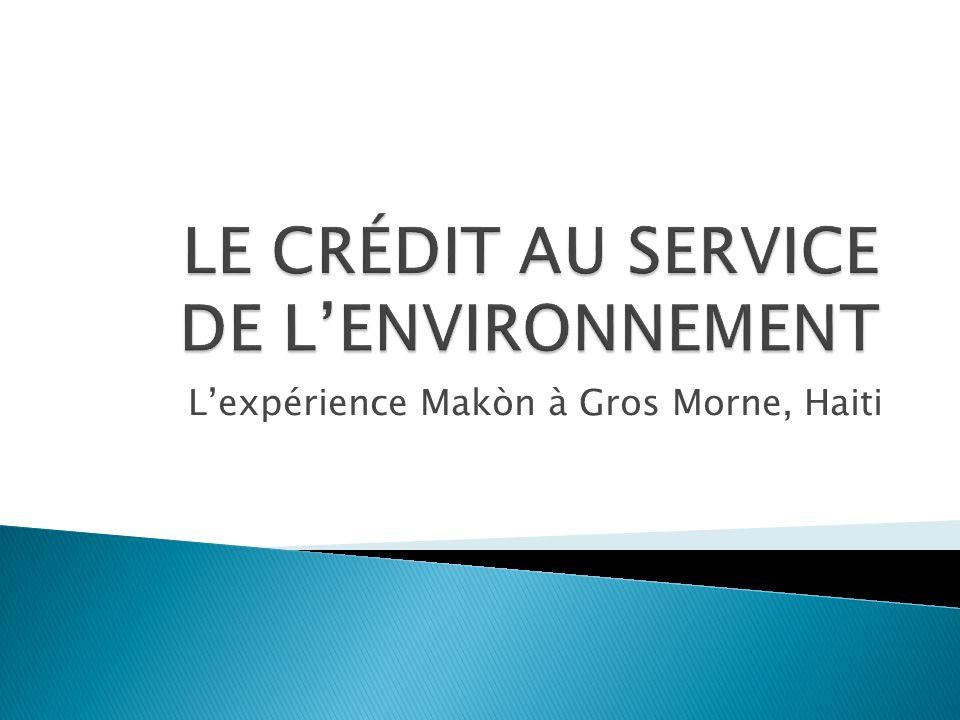 SERVICES FINANCIERS Crédit durgence 4-12 mois Crédit Fonds de roulement aux coopératives de commercialisation 4-6 mois Crédit vergers 7 ans Crédit vergers 7 ans