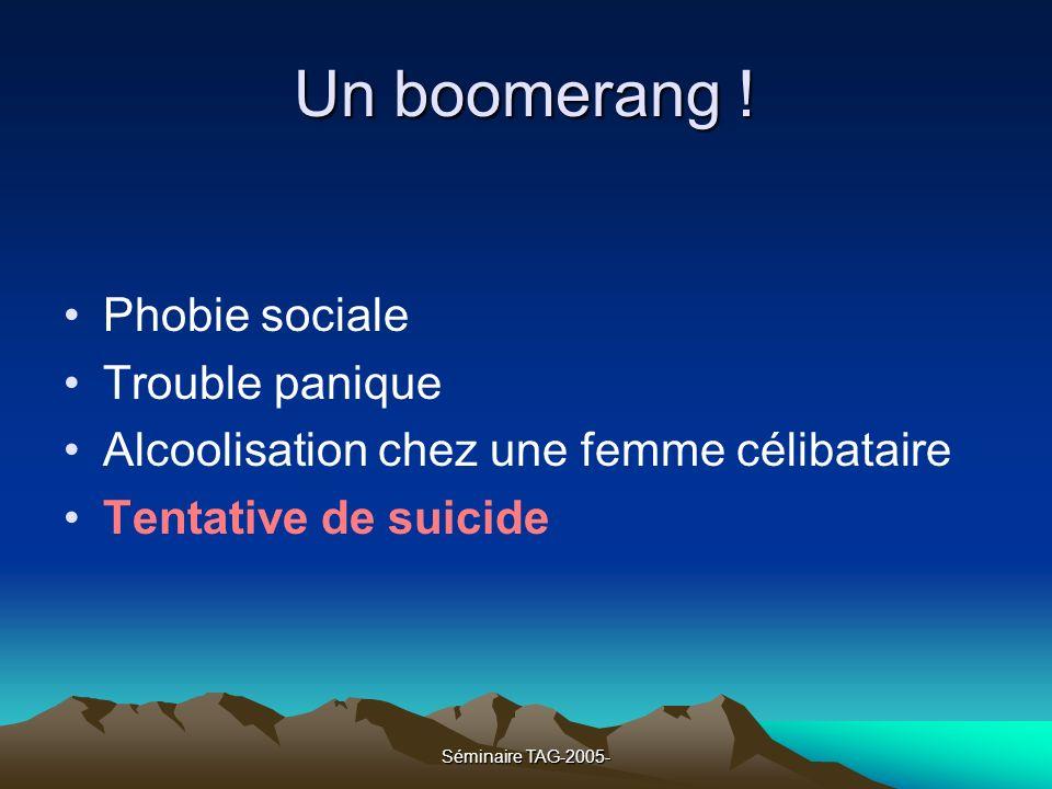 Séminaire TAG-2005- Un boomerang ! Phobie sociale Trouble panique Alcoolisation chez une femme célibataire Tentative de suicide