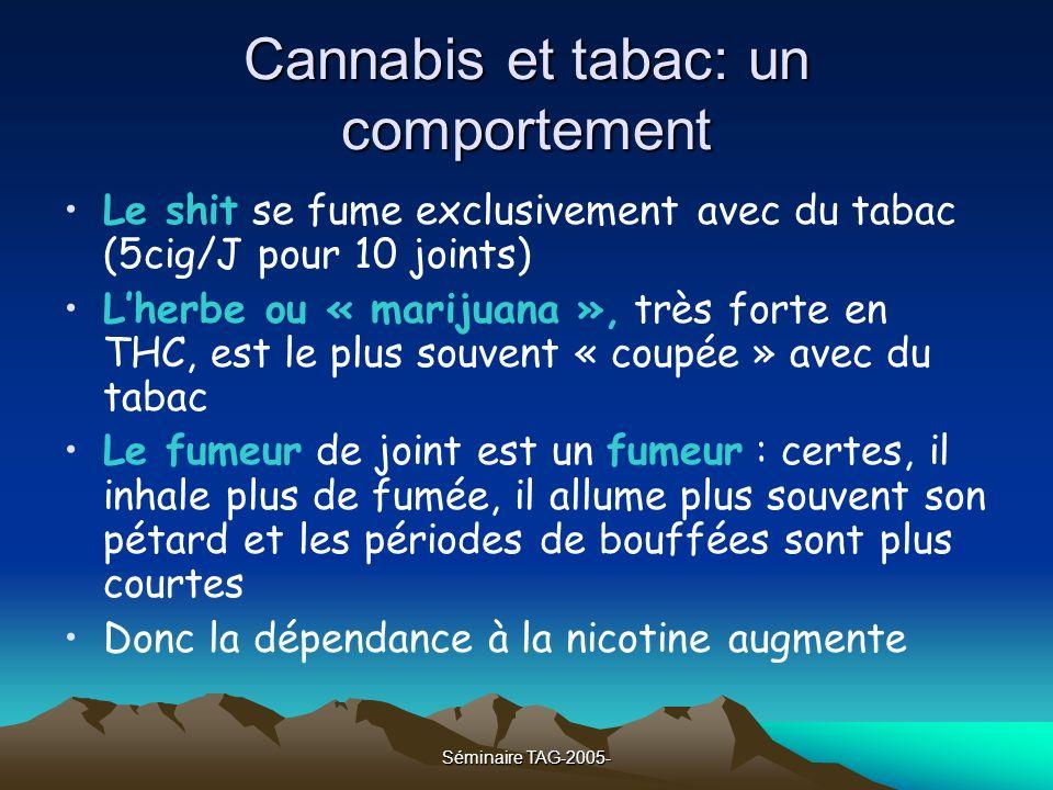 Séminaire TAG-2005- Cannabis et tabac: un comportement Le shit se fume exclusivement avec du tabac (5cig/J pour 10 joints) Lherbe ou « marijuana », tr