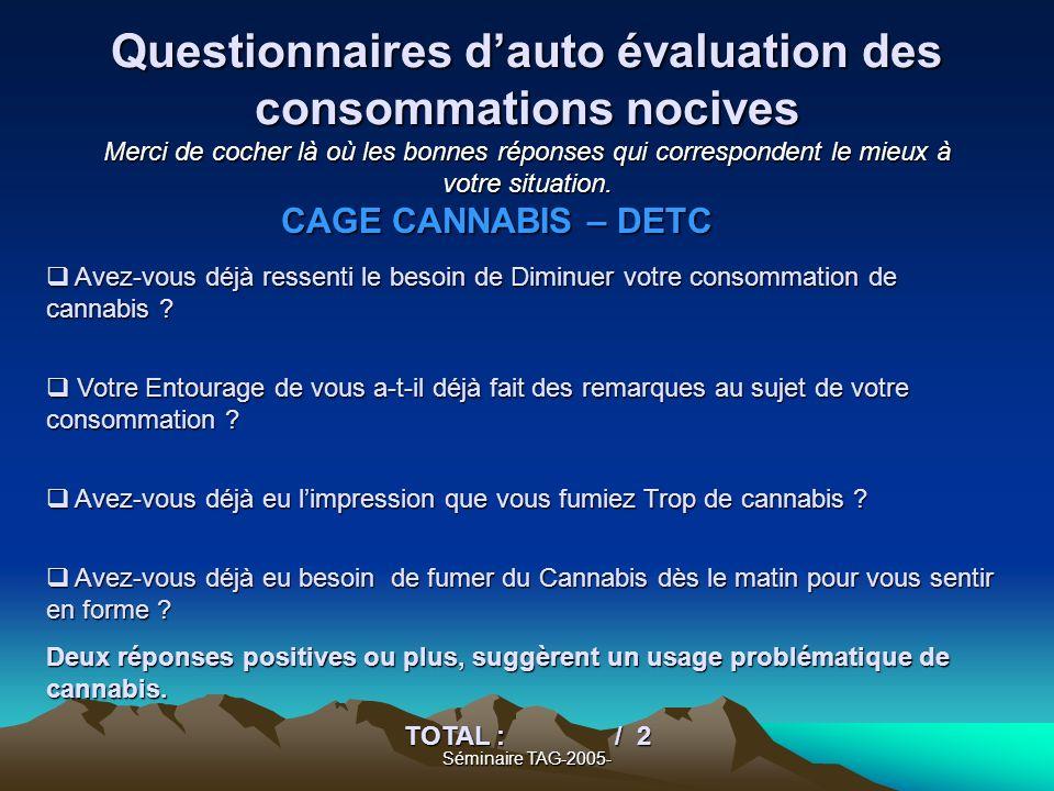 Séminaire TAG-2005- Questionnaires dauto évaluation des consommations nocives Merci de cocher là où les bonnes réponses qui correspondent le mieux à v