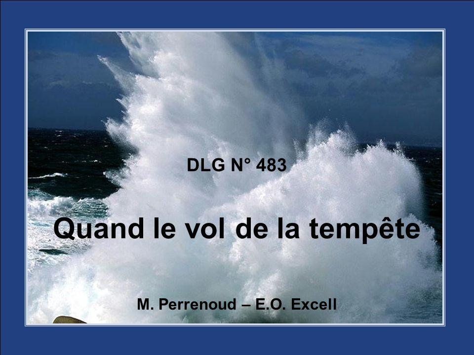DLG N° 483 Quand le vol de la tempête M. Perrenoud – E.O. Excell