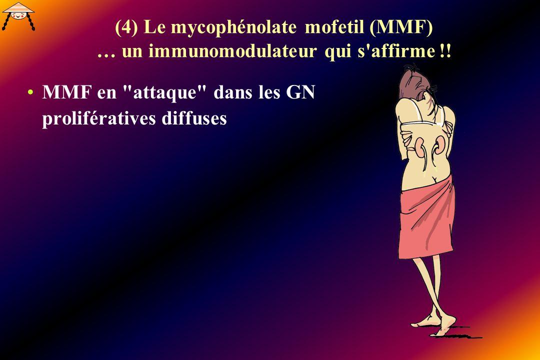 (4) Le mycophénolate mofetil (MMF) … un immunomodulateur qui s'affirme !! MMF en