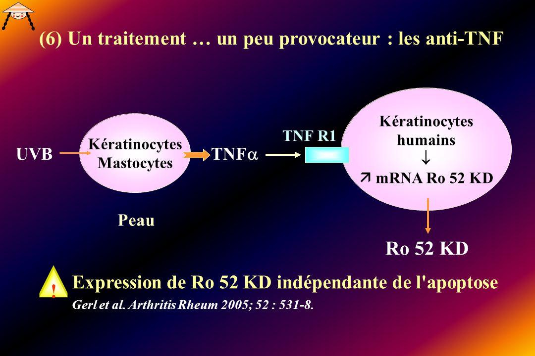 Kératinocytes humains mRNA Ro 52 KD TNF R1 Kératinocytes Mastocytes TNF UVB Peau Expression de Ro 52 KD indépendante de l'apoptose Gerl et al. Arthrit