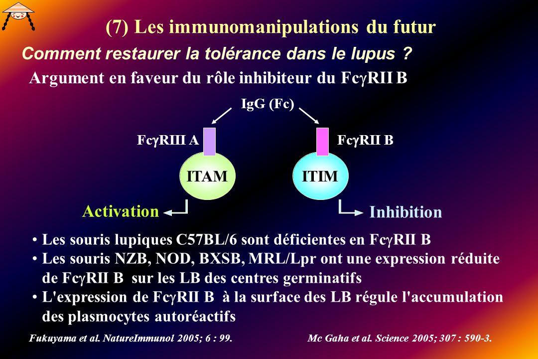 (7) Les immunomanipulations du futur Comment restaurer la tolérance dans le lupus ? Fukuyama et al. NatureImmunol 2005; 6 : 99.Mc Gaha et al. Science