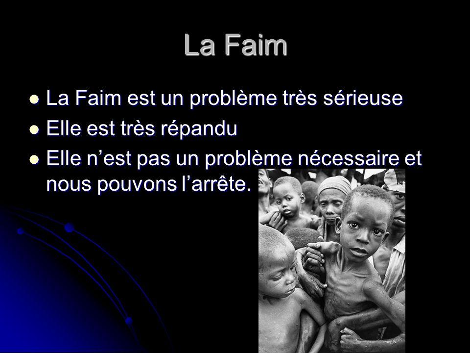 La Faim La Faim est un problème très sérieuse La Faim est un problème très sérieuse Elle est très répandu Elle est très répandu Elle nest pas un problème nécessaire et nous pouvons larrête.