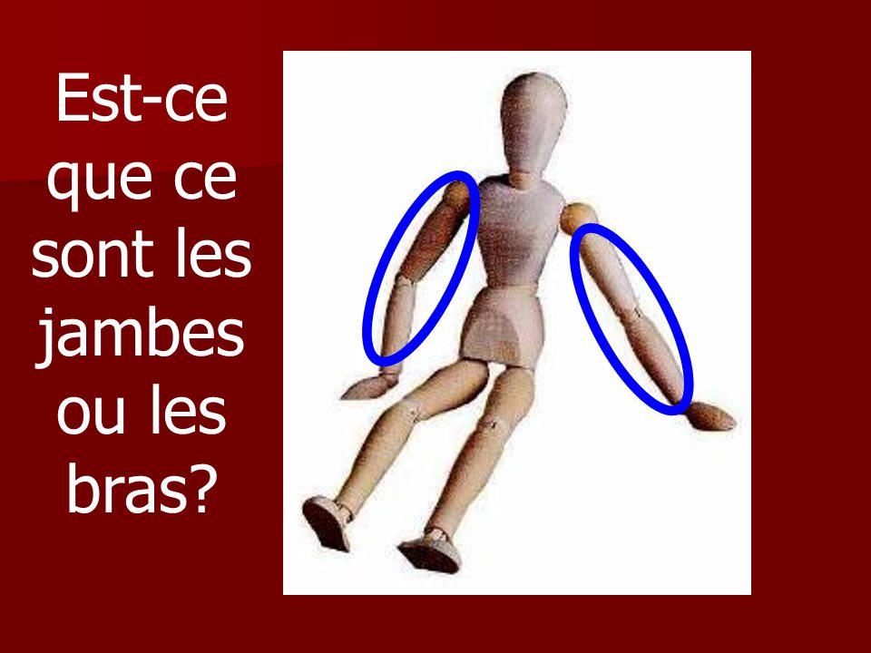 Est-ce que ce sont les jambes ou les bras?
