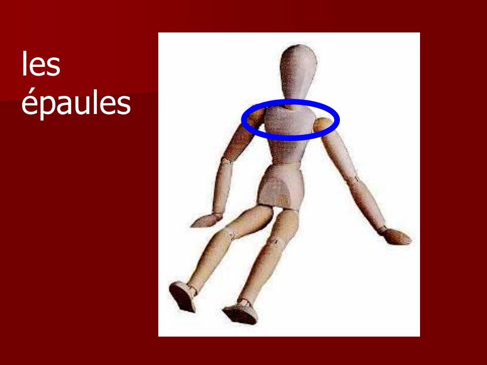 Cest le cou ou le genou?