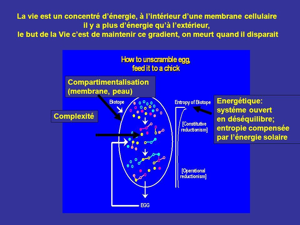 Compartimentalisation (membrane, peau) Energétique: systéme ouvert en déséquilibre; entropie compensée par lénergie solaire Complexité La vie est un c