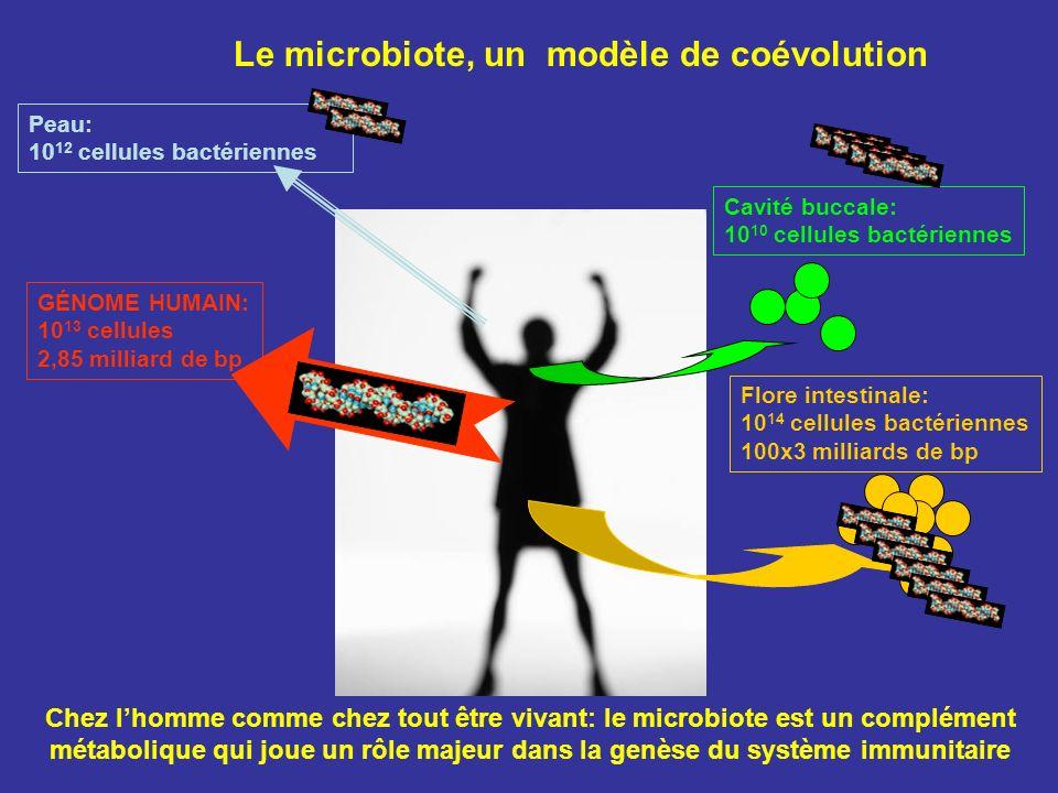 Chez lhomme comme chez tout être vivant: le microbiote est un complément métabolique qui joue un rôle majeur dans la genèse du système immunitaire Cav
