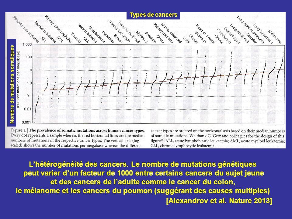 [Alexandrov et al. Nature 2013] Lhétérogénéité des cancers. Le nombre de mutations génétiques peut varier dun facteur de 1000 entre certains cancers d