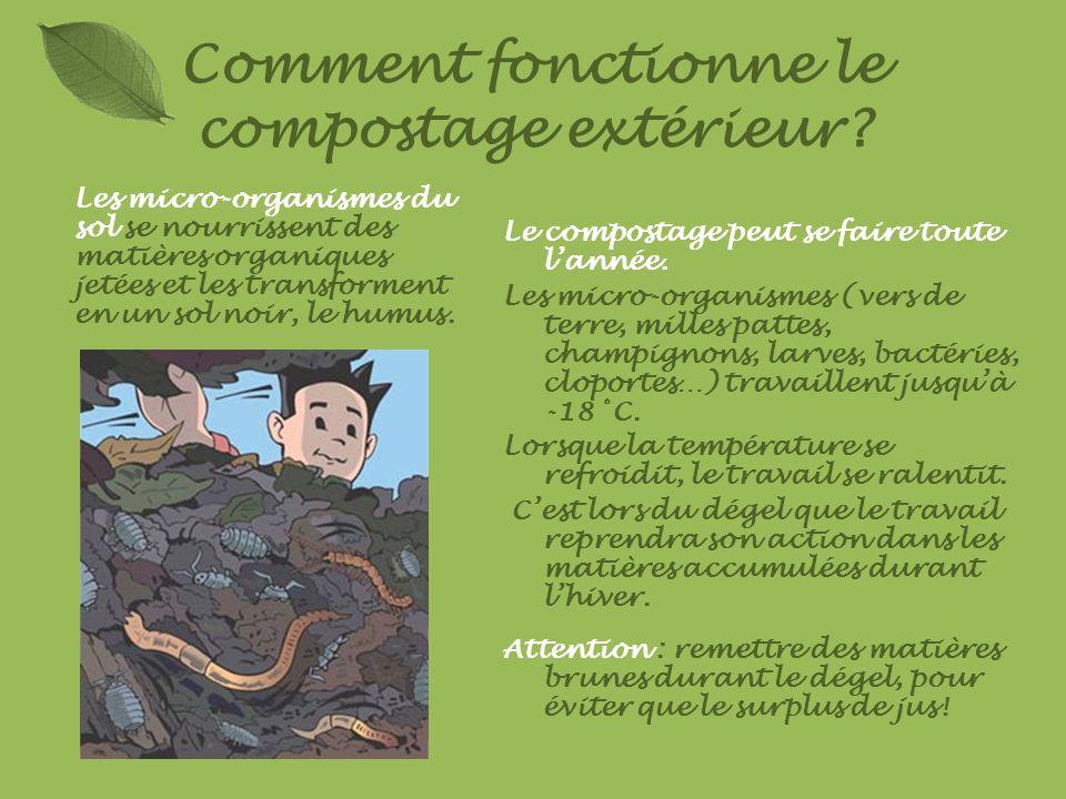 Comment fonctionne le compostage extérieur? Le compostage peut se faire toute lannée. Les micro-organismes (vers de terre, milles pattes, champignons,