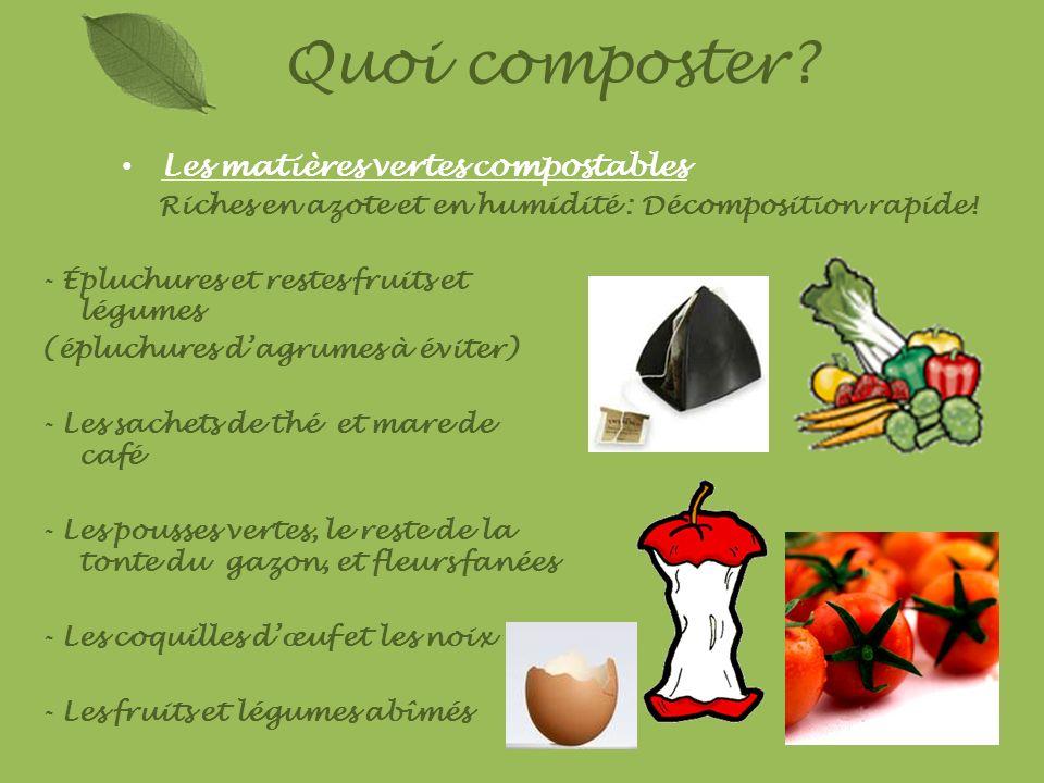 Les matières vertes compostables Riches en azote et en humidité : Décomposition rapide! Quoi composter? - Épluchures et restes fruits et légumes (éplu