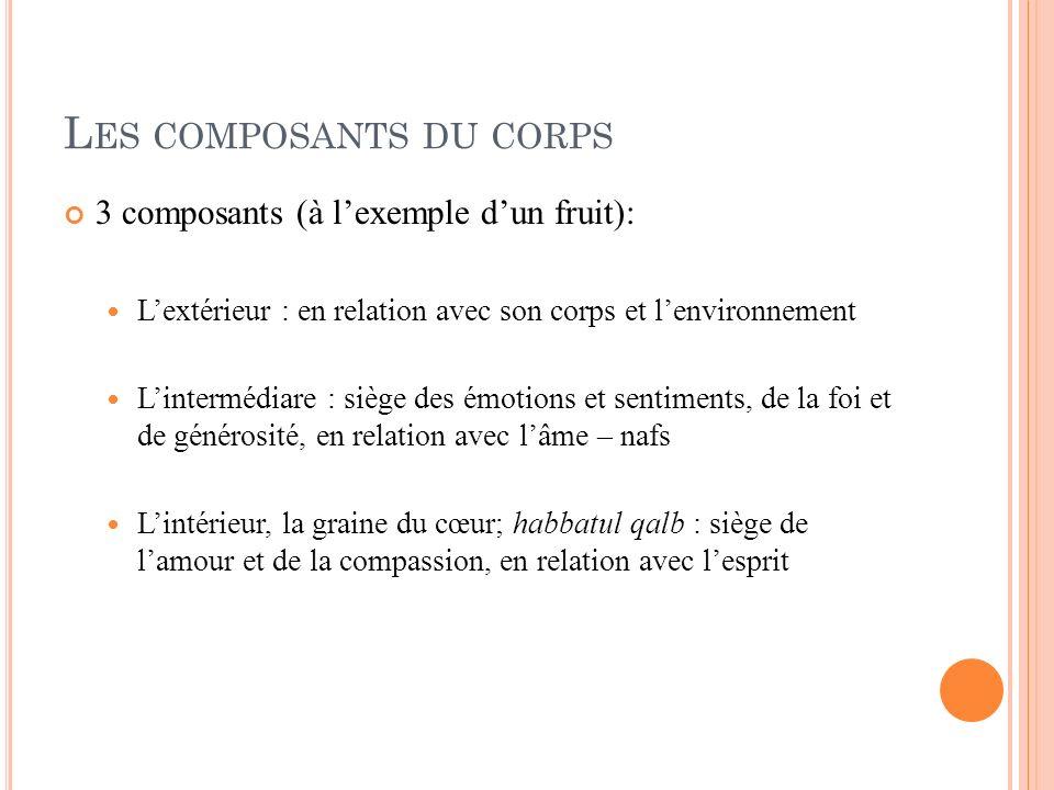L ES COMPOSANTS DU CORPS 3 composants (à lexemple dun fruit): Lextérieur : en relation avec son corps et lenvironnement Lintermédiare : siège des émot