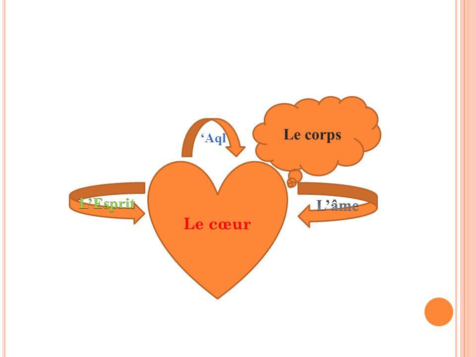 Le cœur Le corps Aql