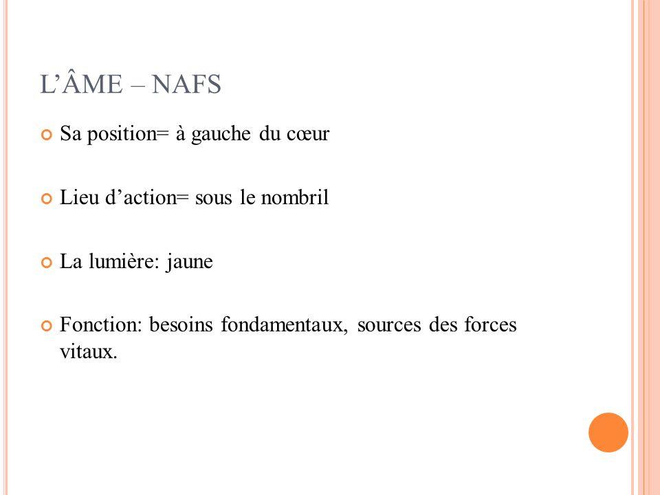 LÂME – NAFS Sa position= à gauche du cœur Lieu daction= sous le nombril La lumière: jaune Fonction: besoins fondamentaux, sources des forces vitaux.
