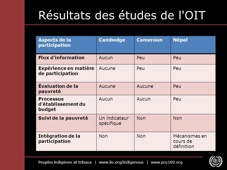 Peuples indigènes et tribaux | www.ilo.org/indigenous | www.pro169.org Résultats des études de l'OIT Aspects de la participation CambodgeCamerounNépal