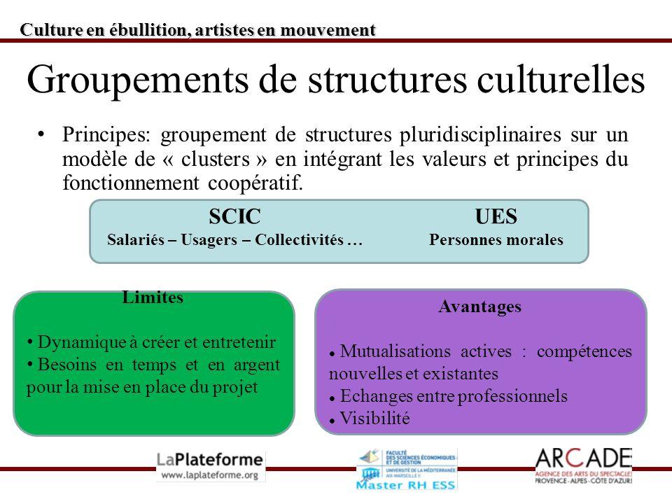 Culture en ébullition, artistes en mouvement Groupements de structures culturelles Principes: groupement de structures pluridisciplinaires sur un modèle de « clusters » en intégrant les valeurs et principes du fonctionnement coopératif.