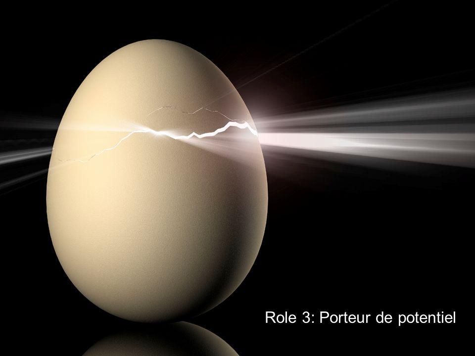 Role 3: Porteur de potentiel