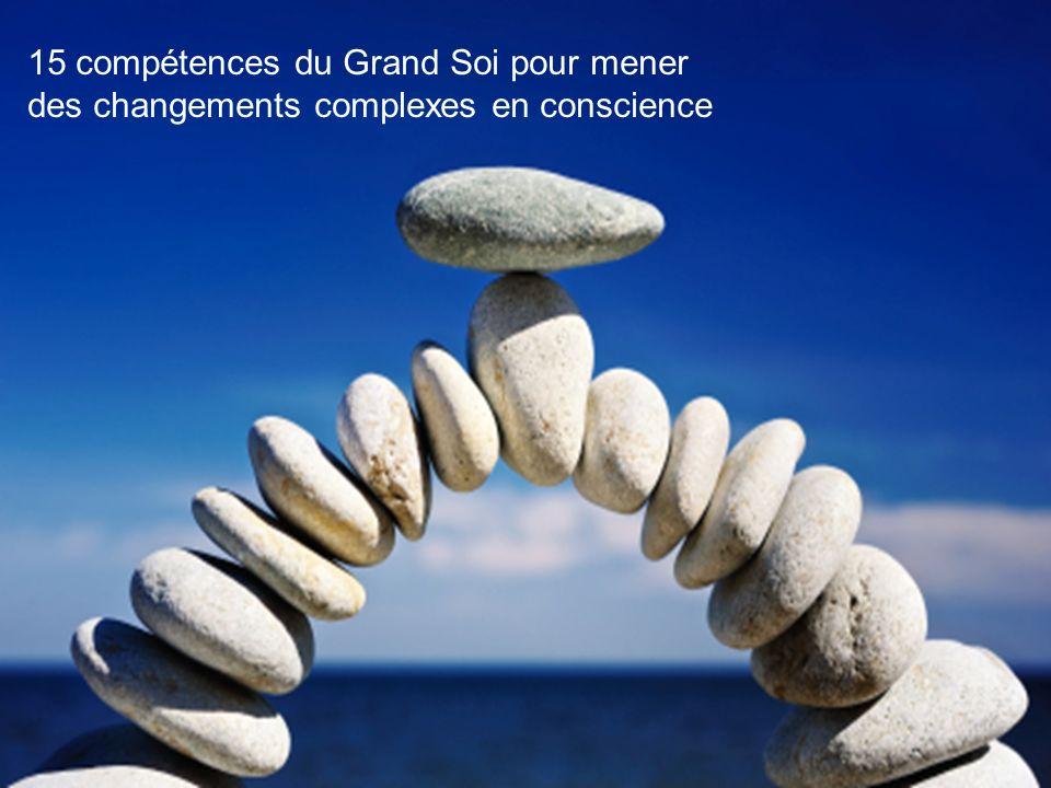 15 compétences du Grand Soi pour mener des changements complexes en conscience