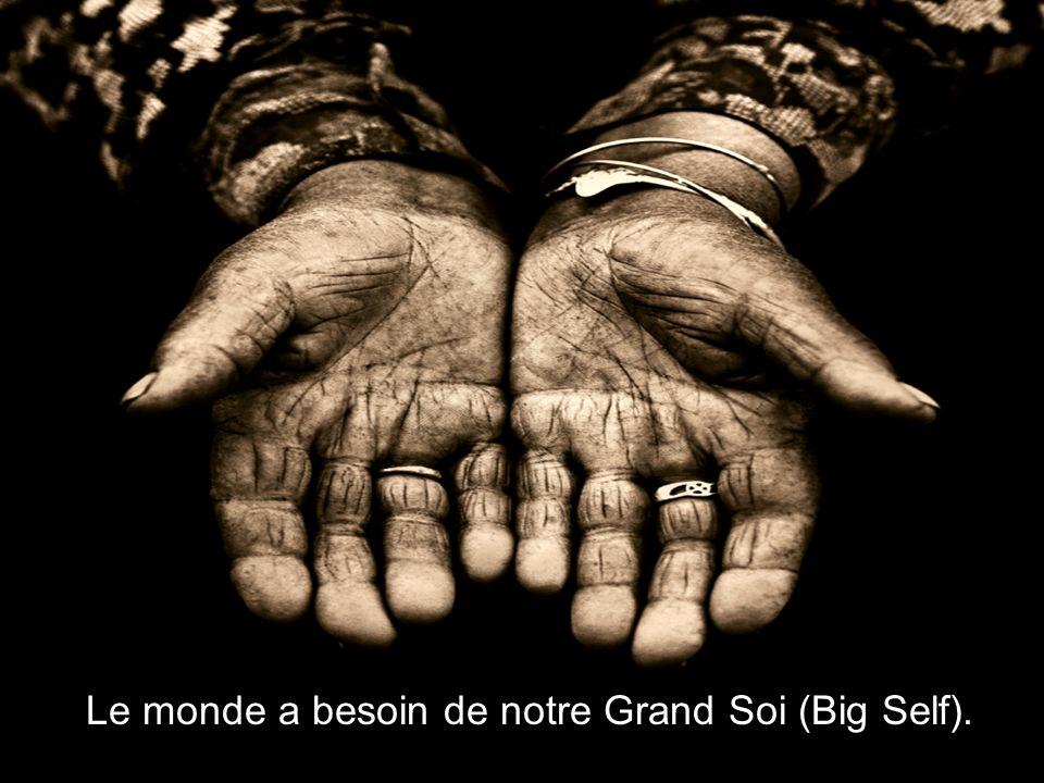 Le monde a besoin de notre Grand Soi (Big Self).