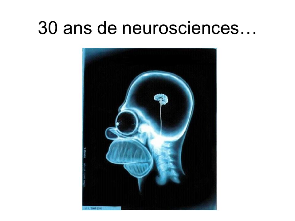 30 ans de neurosciences…