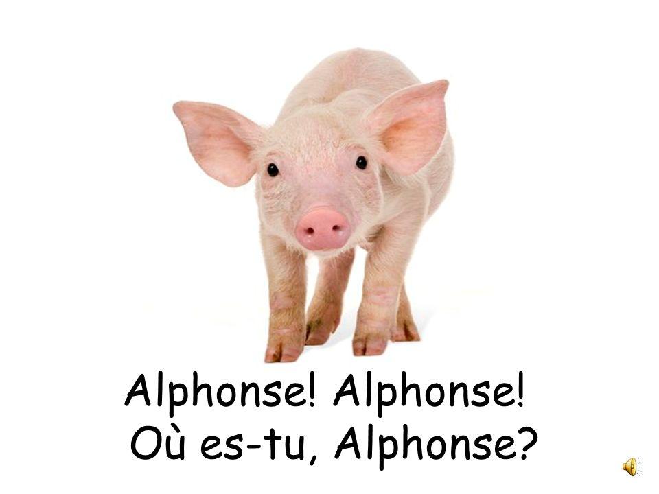 Alphonse à la foire