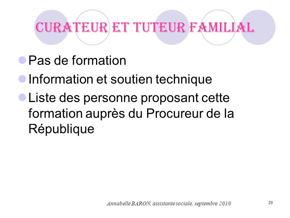 29 Curateur et tuteur familial Pas de formation Information et soutien technique Liste des personne proposant cette formation auprès du Procureur de l