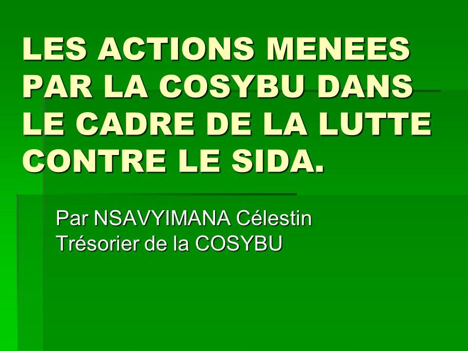 La COSYBU a participé régulièrement à des séminaires ou ateliers préparant le plan daction national de lutte contre le SIDA 2002-2006 ; La COSYBU a participé régulièrement à des séminaires ou ateliers préparant le plan daction national de lutte contre le SIDA 2002-2006 ; La COSYBU est membre de lUSLS/MFPTSS depuis 2003 et dans ce cadre participe à toutes les activités de lUSLS notamment les plus importantes : La COSYBU est membre de lUSLS/MFPTSS depuis 2003 et dans ce cadre participe à toutes les activités de lUSLS notamment les plus importantes :