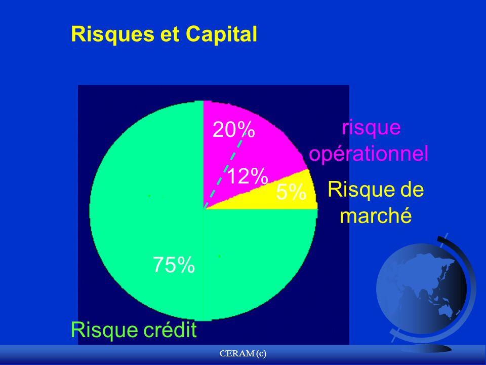 CERAM (c) Risques et Capital 75% Risque crédit 20% risque opérationnel 5% Risque de marché 12%