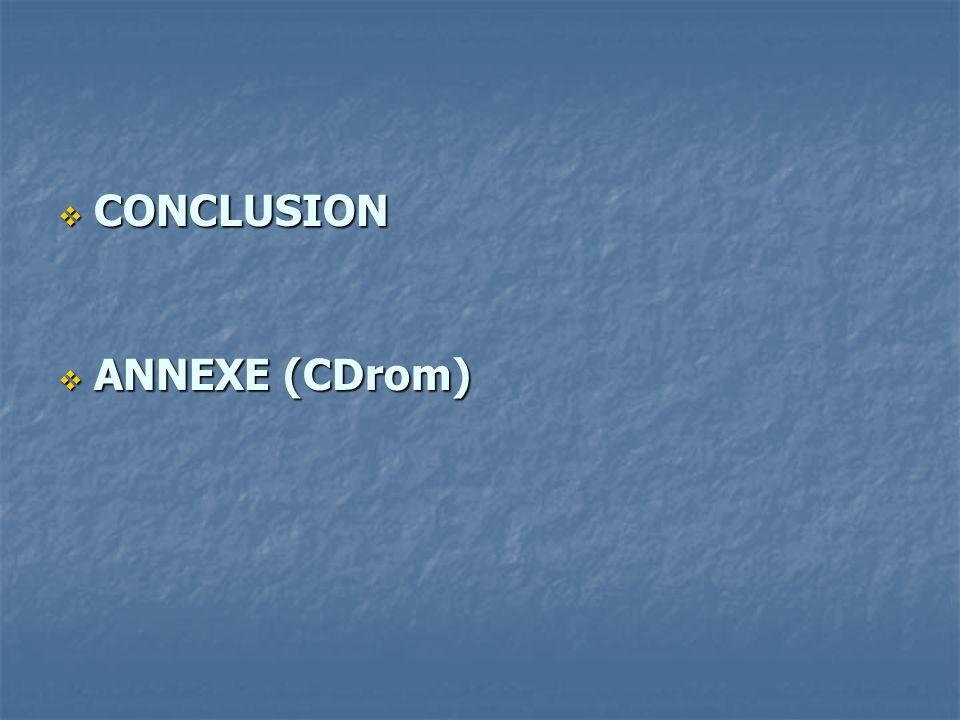 CONCLUSION CONCLUSION ANNEXE (CDrom) ANNEXE (CDrom)
