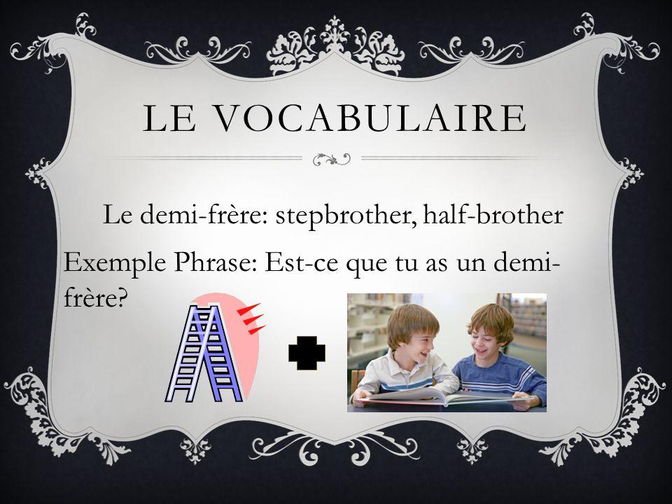 LE VOCABULAIRE Le demi-frère: stepbrother, half-brother Exemple Phrase: Est-ce que tu as un demi- frère?