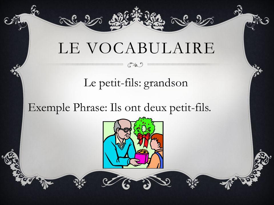 LE VOCABULAIRE Le petit-fils: grandson Exemple Phrase: Ils ont deux petit-fils.