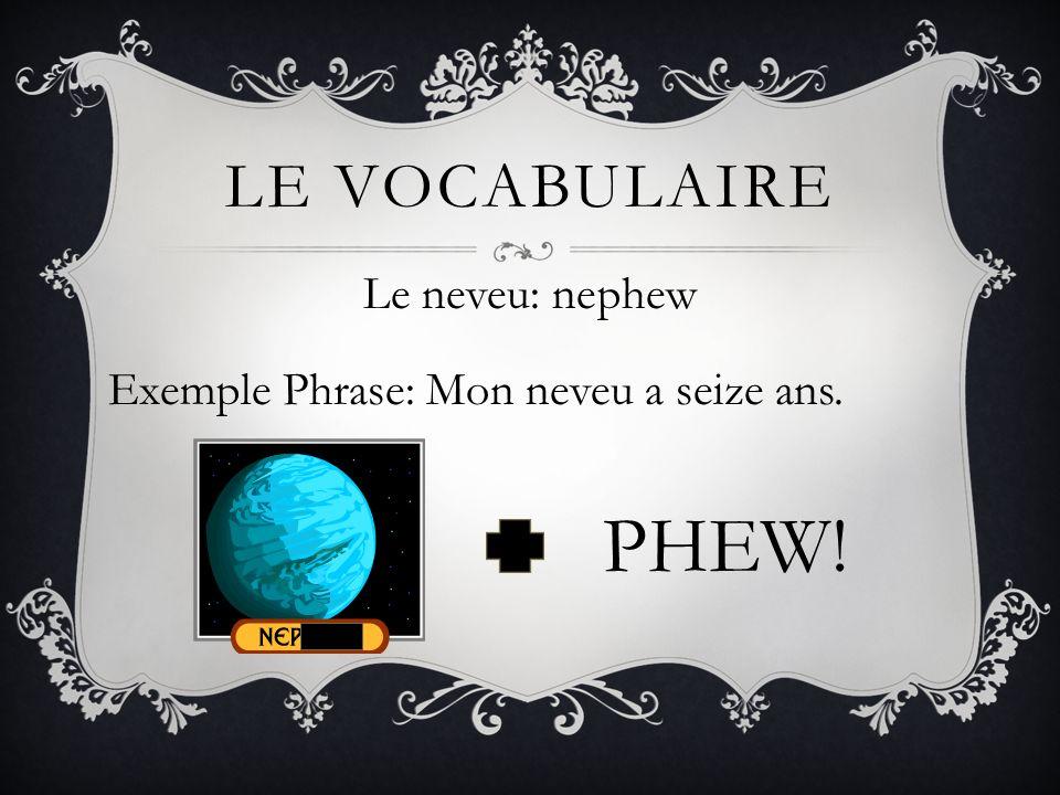 LE VOCABULAIRE Le neveu: nephew Exemple Phrase: Mon neveu a seize ans. PHEW!