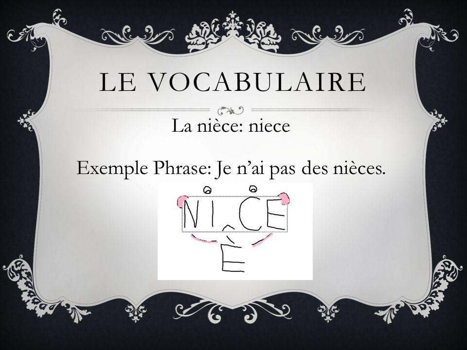LE VOCABULAIRE La nièce: niece Exemple Phrase: Je nai pas des nièces.