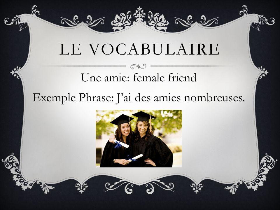 LE VOCABULAIRE Une amie: female friend Exemple Phrase: Jai des amies nombreuses.
