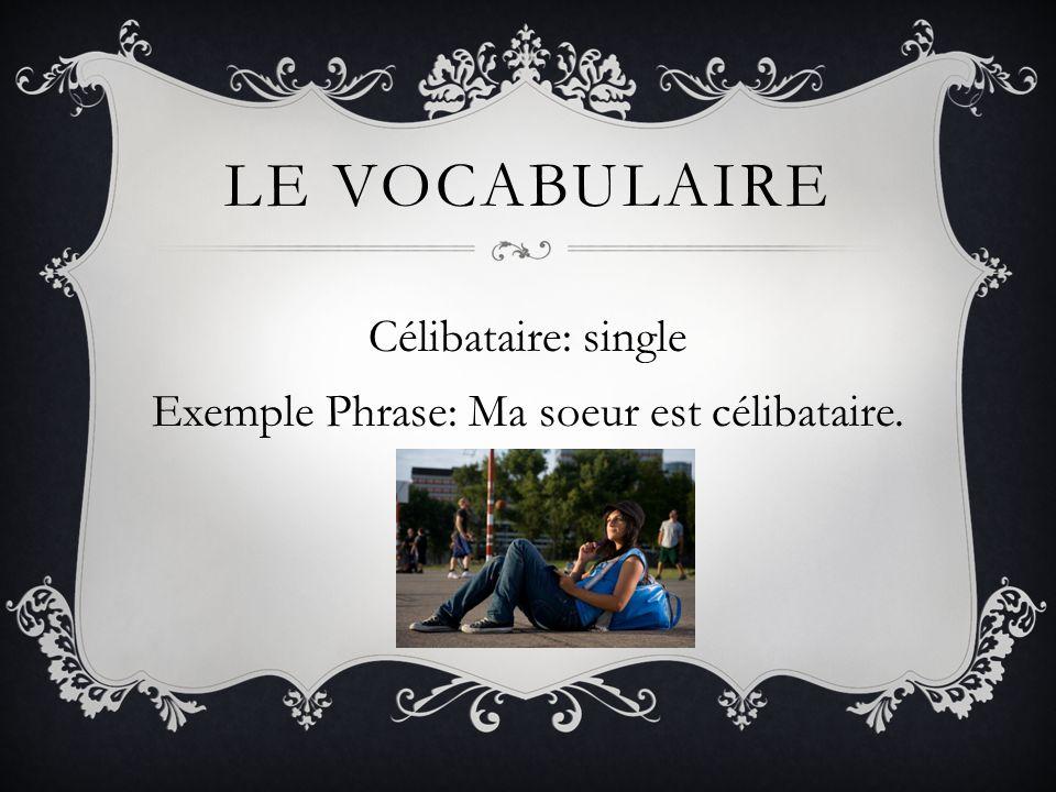 LE VOCABULAIRE Divorcé: divorced Exemple Phrase: Son oncle et sa tante sont divorcés.