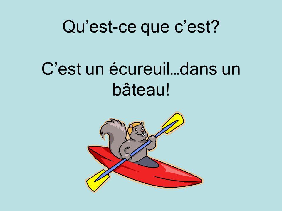 Quest-ce que cest? Cest un écureuil…dans un bâteau!