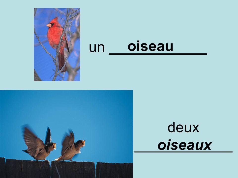 un ____________ deux ____________ oiseau oiseaux