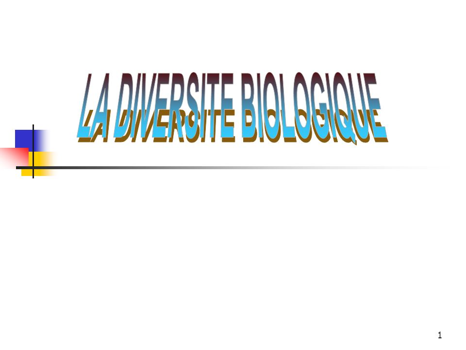 2014-01-03 Elhadj Maadjou BAH, Coordonnateur P.