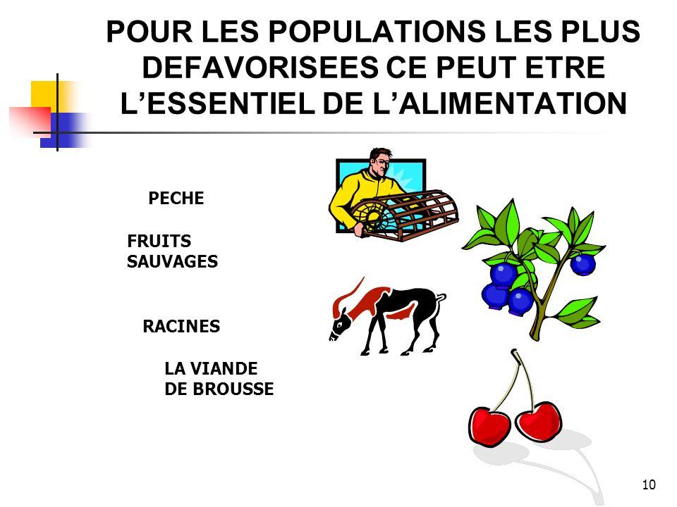 10 POUR LES POPULATIONS LES PLUS DEFAVORISEES CE PEUT ETRE LESSENTIEL DE LALIMENTATION LA VIANDE DE BROUSSE PECHE FRUITS SAUVAGES RACINES