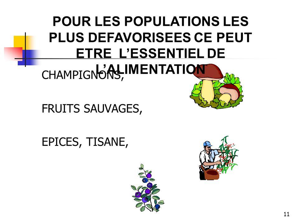 11 CHAMPIGNONS, FRUITS SAUVAGES, EPICES, TISANE, POUR LES POPULATIONS LES PLUS DEFAVORISEES CE PEUT ETRE LESSENTIEL DE LALIMENTATION
