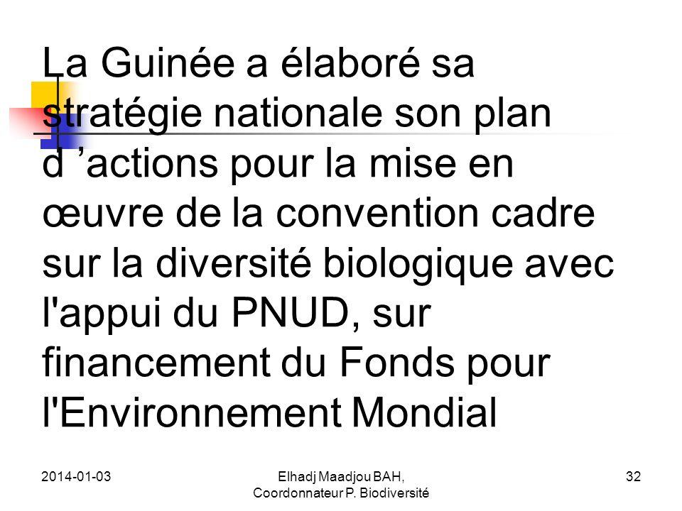 2014-01-03Elhadj Maadjou BAH, Coordonnateur P. Biodiversité 32 La Guinée a élaboré sa stratégie nationale son plan d actions pour la mise en œuvre de