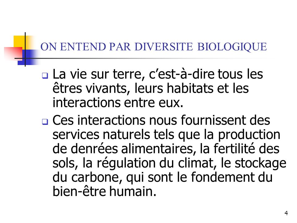 5 LA DIVERSITE BIOLOGIQUE EST - INDISPENSABLE A LA SANTE HUMAINE - UNE SOURCE ALIMENTAIRE - FONDAMENTALE POUR L AGRICULTURE - UNE RESSOURCE ECONOMIQUE - NECESSAIRE AU BON FONCTIONNEMENT DES ECOSYSTEMES 40 % DE LECONOMIE MONDIALE DEPEND DE LUTILISATION DE LA DIVERSITE BIOLOGIQUE OU DE SES PRODUITS