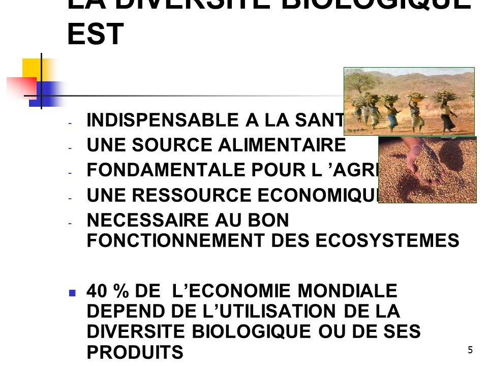 5 LA DIVERSITE BIOLOGIQUE EST - INDISPENSABLE A LA SANTE HUMAINE - UNE SOURCE ALIMENTAIRE - FONDAMENTALE POUR L AGRICULTURE - UNE RESSOURCE ECONOMIQUE