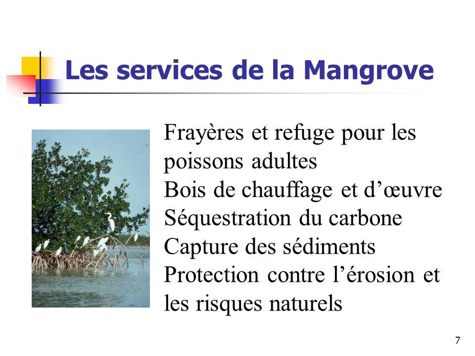 7 Les services de la Mangrove Frayères et refuge pour les poissons adultes Bois de chauffage et dœuvre Séquestration du carbone Capture des sédiments Protection contre lérosion et les risques naturels