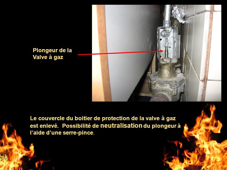 Le couvercle du boitier de protection de la valve à gaz est enlevé. Possibilité de neutralisation du plongeur à laide dune serre-pince. Plongeur de la