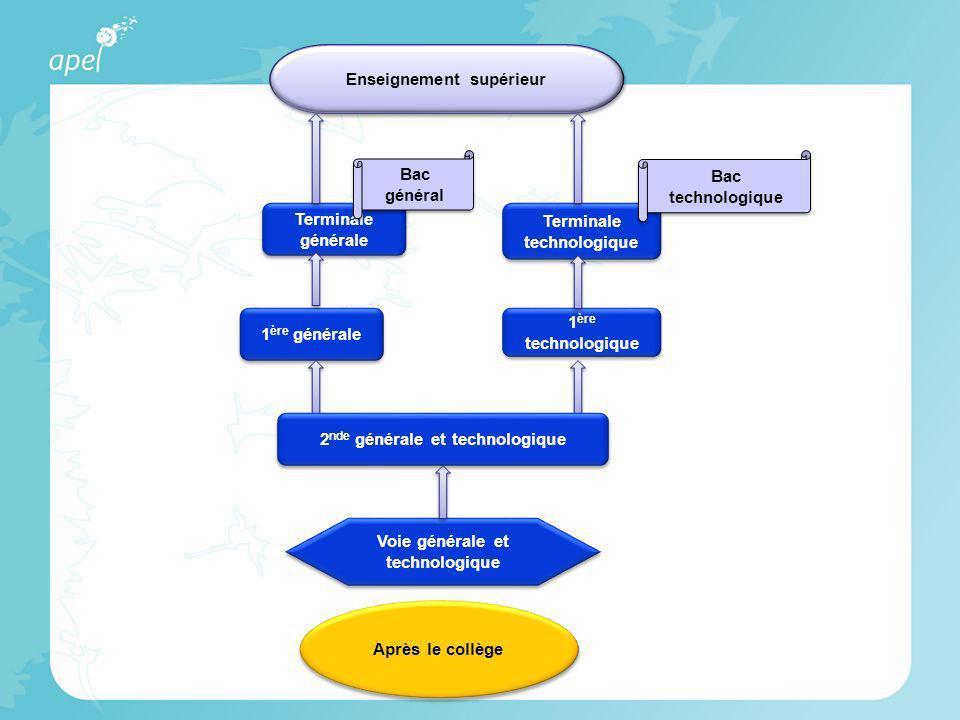 Voie générale et technologique 1 ère générale 1 ère technologique Terminale générale Terminale générale Terminale technologique Bac général Bac techno